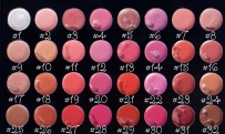 Coastal Scents Lip palette